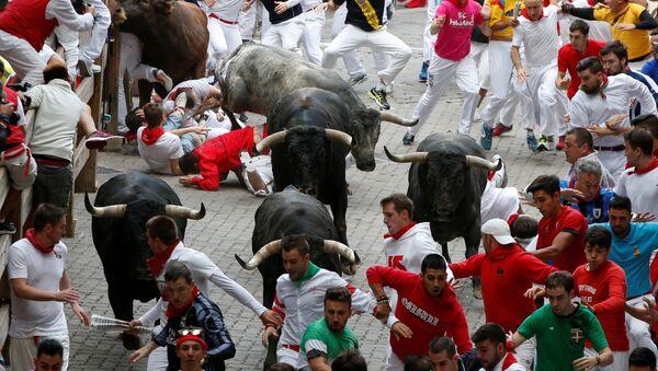 Fiesta de San Fermín en Pamplona, España - Sputnik Mundo