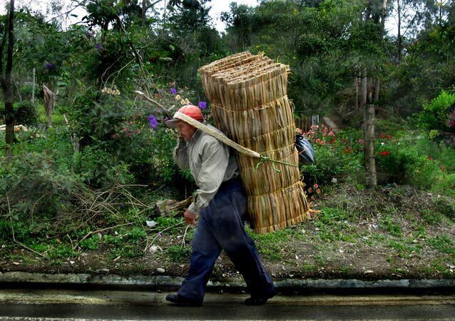 Un campesino colombiano