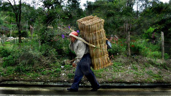 Un campesino colombiano - Sputnik Mundo
