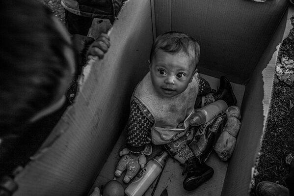 Los ganadores del Concurso de Fotoperiodismo Andréi Stenin - Sputnik Mundo