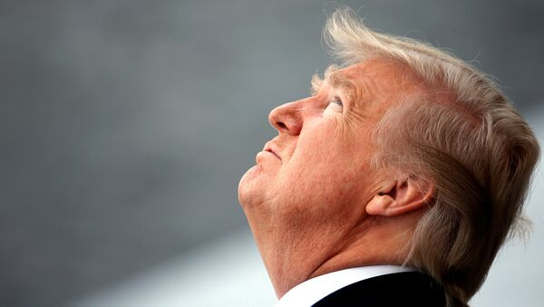 Donald Trump, presidente de Estados Unidos, mira hacia arriba - Sputnik Mundo