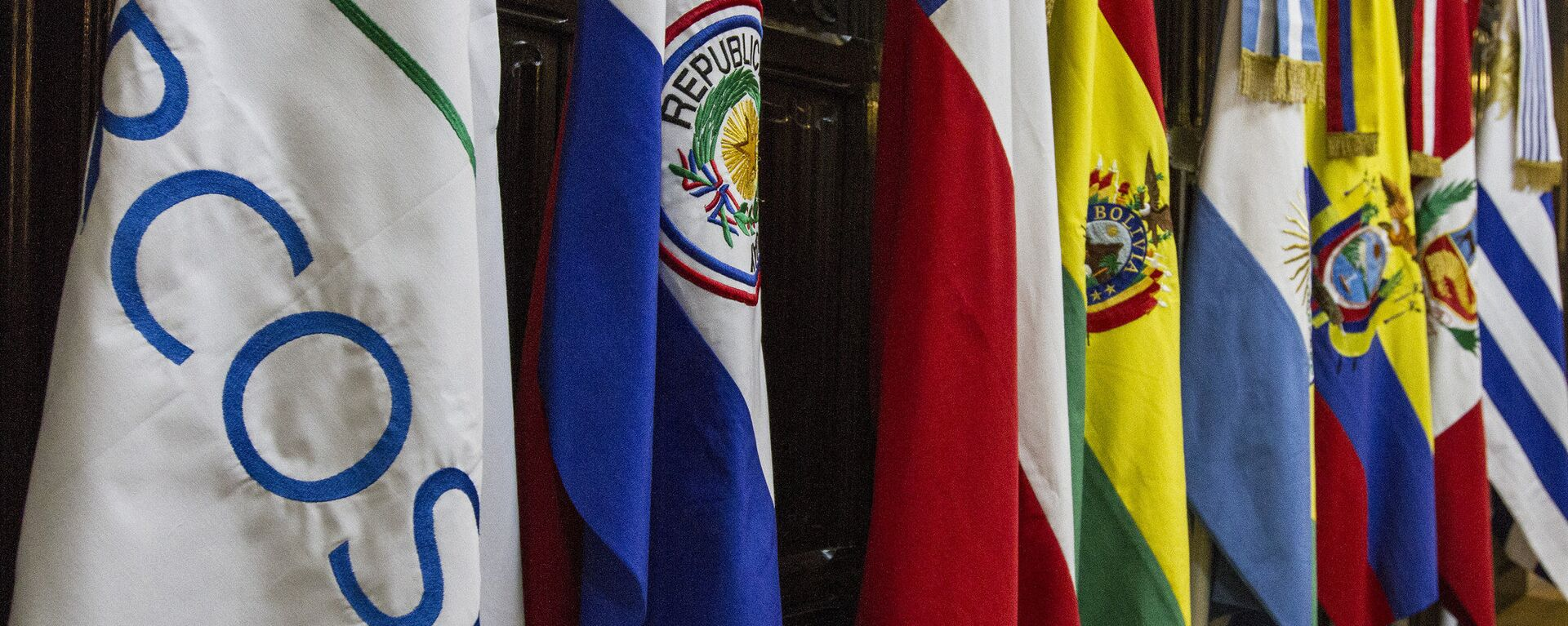 Banderas de los países miembros del Mercosur - Sputnik Mundo, 1920, 25.06.2021