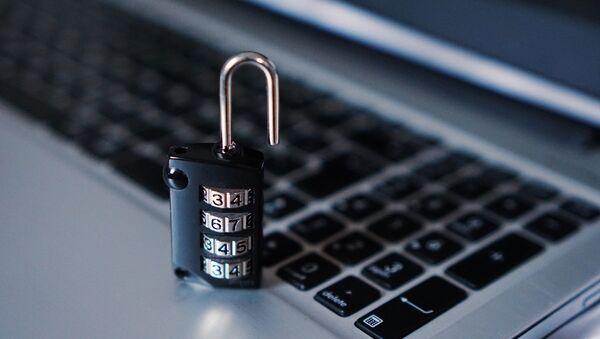 Seguridad informática (imagen referencial) - Sputnik Mundo