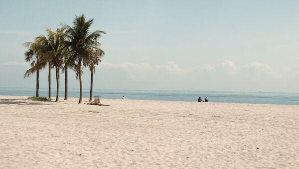 Playa en Miami, Florida - Sputnik Mundo