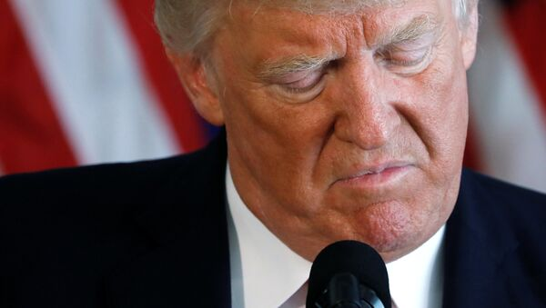 Donald Trump, el presidente de Estados Unidos - Sputnik Mundo