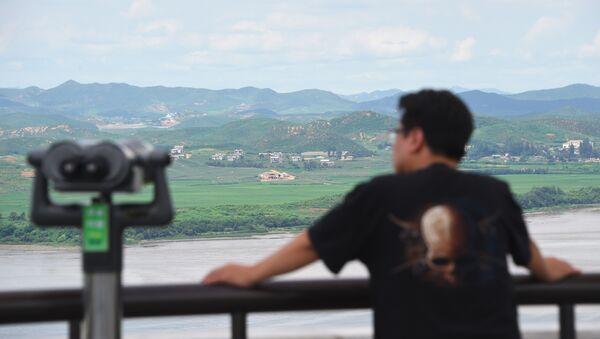 Un hombre en el punto de observación de Corea del Norte en Corea del Sur - Sputnik Mundo