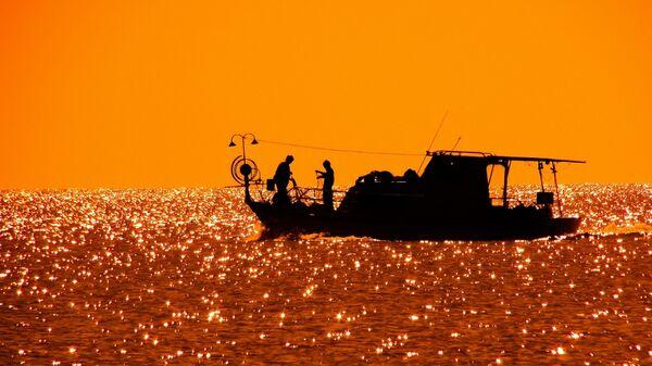 Pesca (imagen referencial) - Sputnik Mundo