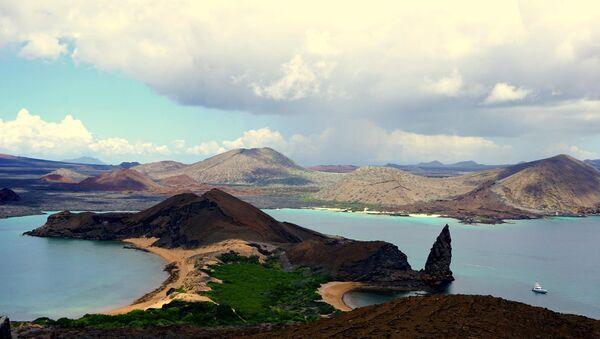 Las Islas Galápagos - Sputnik Mundo