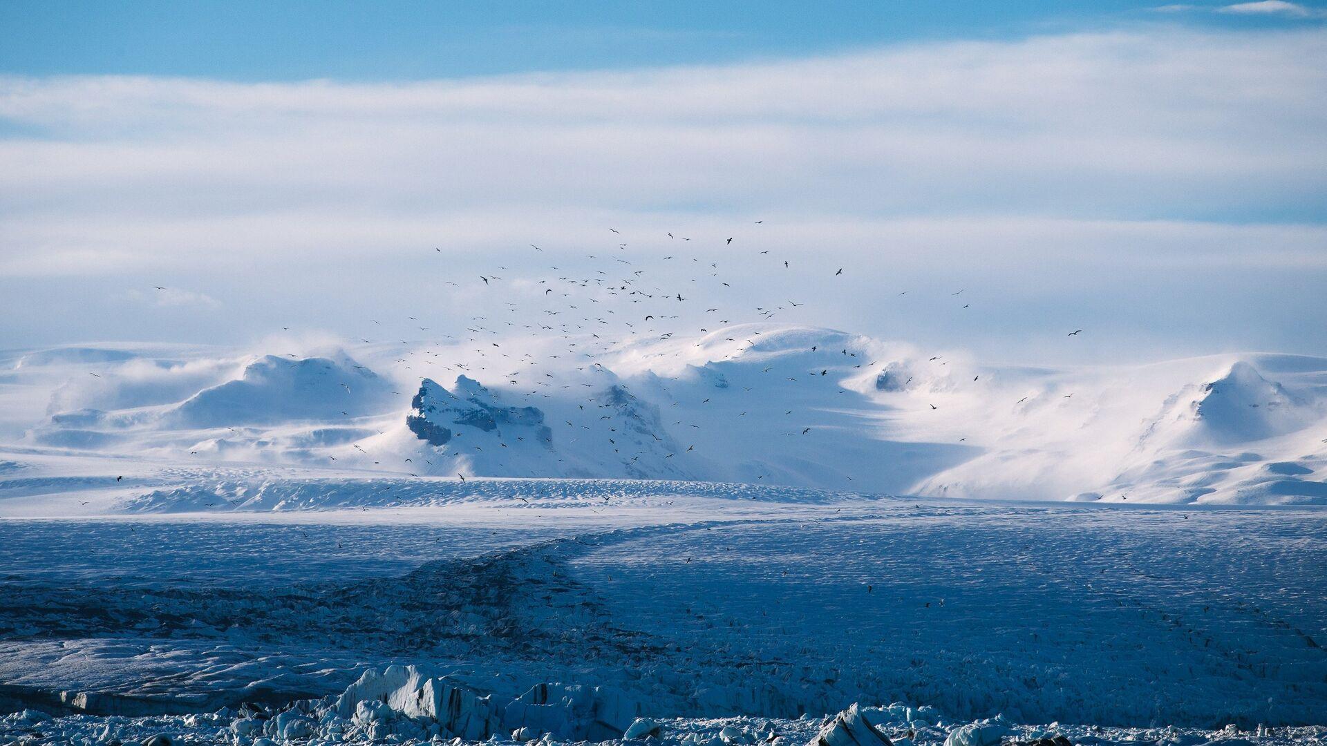 Ártico (imagen referencial) - Sputnik Mundo, 1920, 17.05.2021