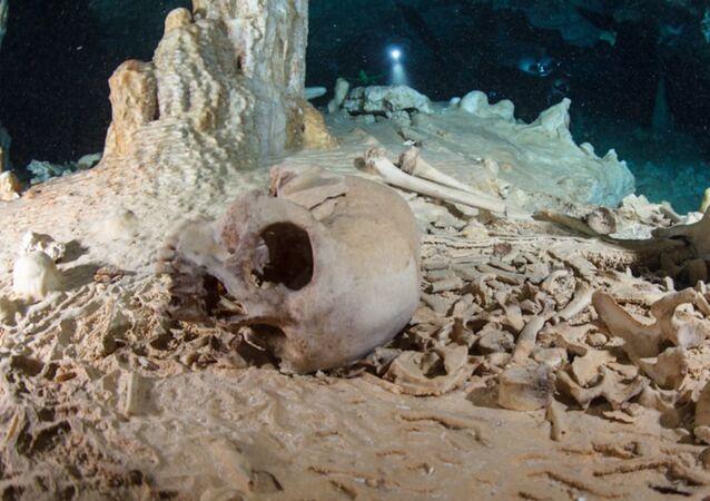 Cráneo encontrado en la cueva Chan Hol, península de Yucatán, México