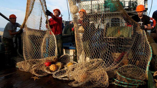 Pesca en Rusia - Sputnik Mundo