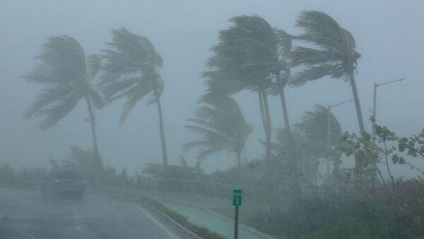 Huracán Irma (archivo) - Sputnik Mundo