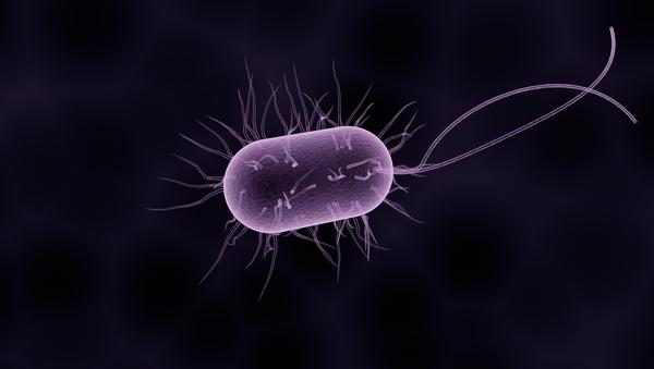 Bacteria (ilustración gráfica) - Sputnik Mundo