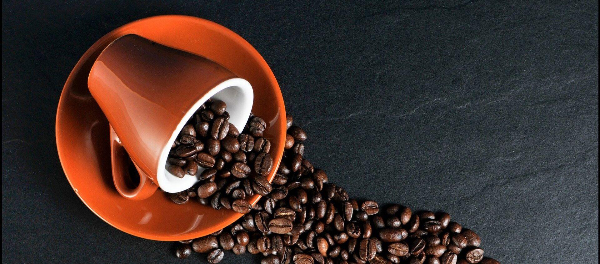 Granos de café - Sputnik Mundo, 1920, 17.01.2021