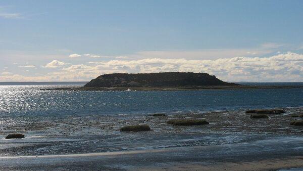 La isla de los Pájaros, en Chubut, Argentina - Sputnik Mundo