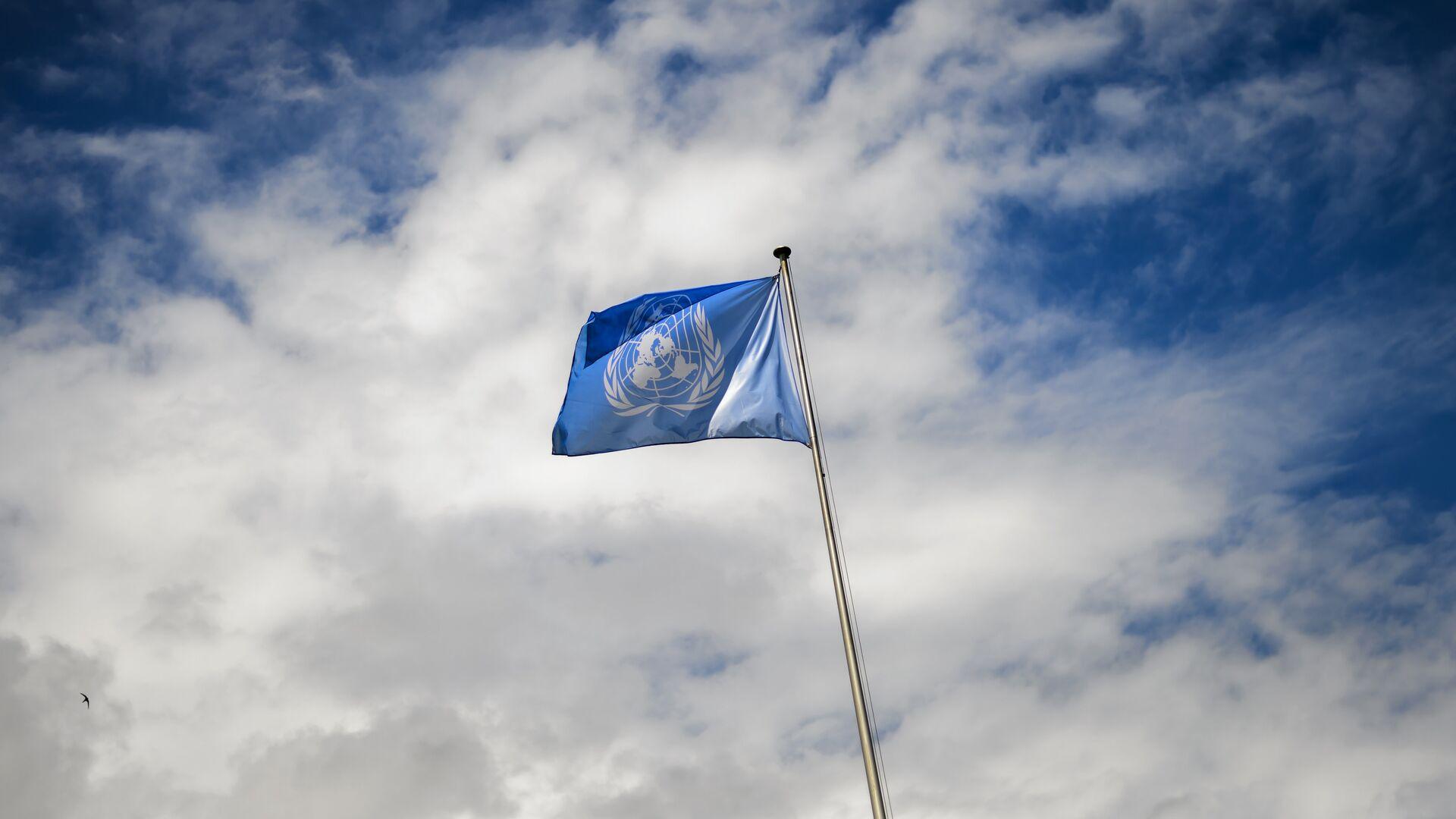 La bandera de la ONU - Sputnik Mundo, 1920, 23.02.2021