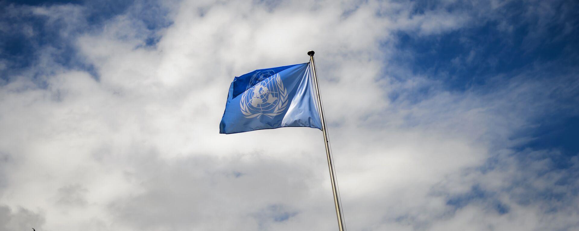 La bandera de la ONU - Sputnik Mundo, 1920, 07.06.2021