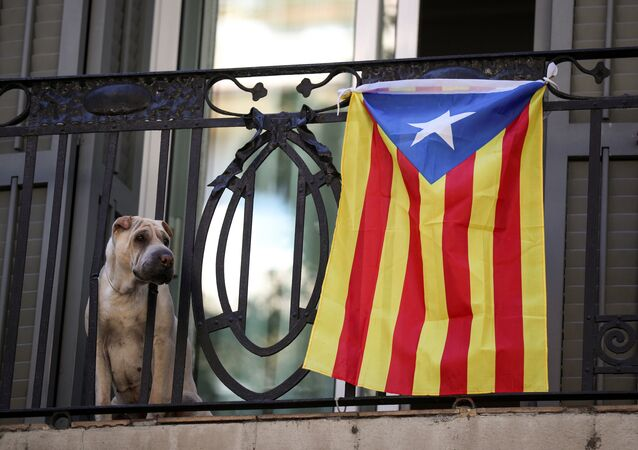 Un perro con Estelada, bandera separatista de Cataluña