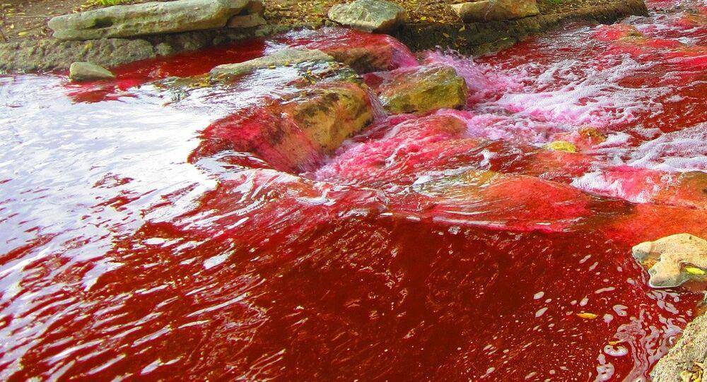 Un río rojo
