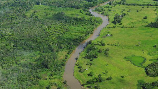 Amazonía brasileña - Sputnik Mundo