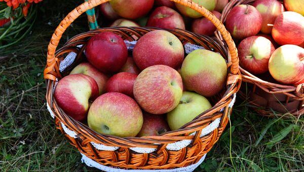 Las manzanas presentadas en una feria agroalimentaria celebrada en la ciudad rusa  de Bryansk - Sputnik Mundo