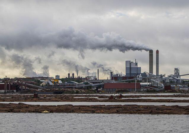 Planta de la compañía finlandesa UPM