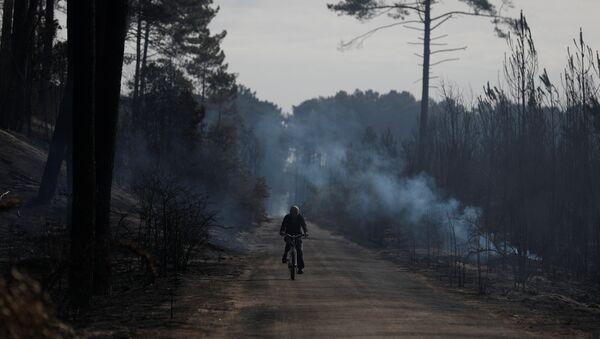 Incendios forestales en Portugal - Sputnik Mundo