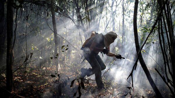Un voluntario trata de apagar el incendeio en Brasil - Sputnik Mundo