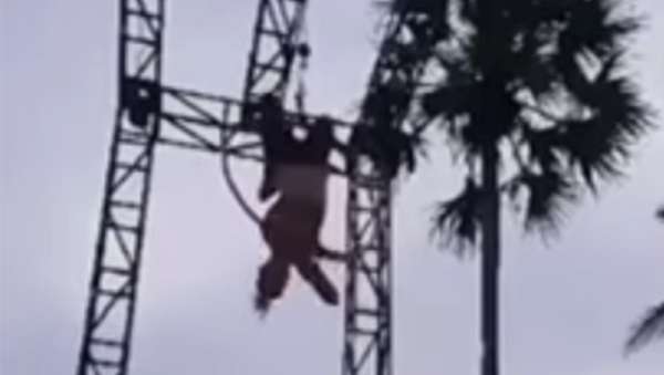 Una acróbata se rompe el cuello durante un ensayo - Sputnik Mundo