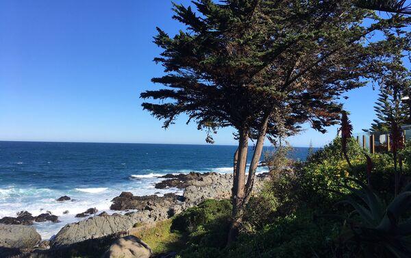 La vista del océano Pacífico desde la casa de Pablo Neruda en Isla Negra, Chile - Sputnik Mundo