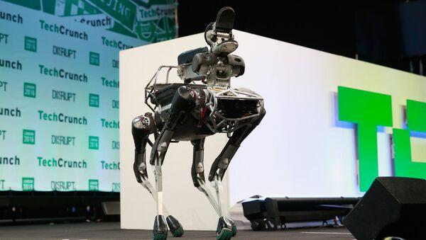Un robot de cuatro patas de Boston Dynamics parecido ANYmal - Sputnik Mundo