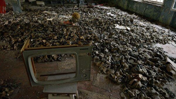 Zona de exclusión de Chernóbil - Sputnik Mundo