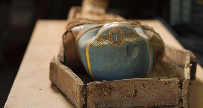 La momia descubierta en el oasis de El Fayum, Egipto
