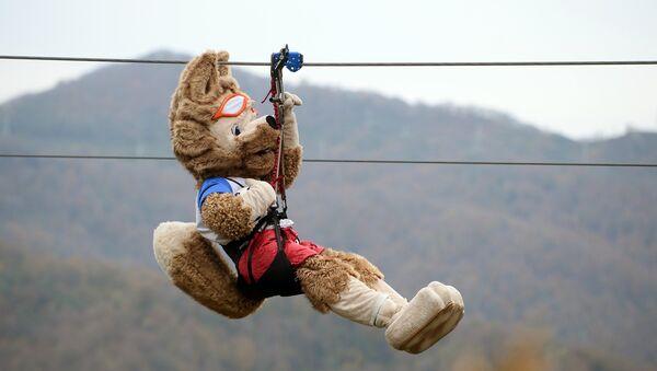 Zabivaka, la mascota oficial del Mundial 2018, se lanza en tirolina en Sochi - Sputnik Mundo