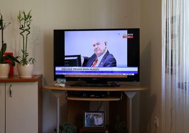 Ratko Mladic, el exmilitar serbobosnio