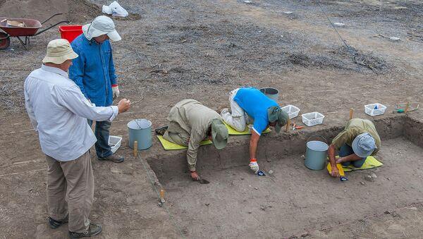 El doctor Alexandr Popov, de la Universidad Federal del Lejano Oeste de Rusia, en la excavación en Real Alto, Ecuador. - Sputnik Mundo