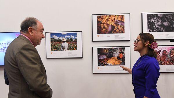 Exposición de las obras ganadoras del Tercer Concurso Internacional de Fotoperiodismo Andréi Stenin en el Centro de la Imagen de México - Sputnik Mundo
