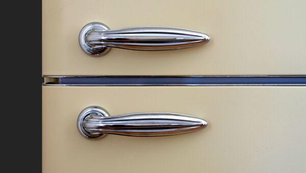 Las puertas de un frigorífico (imagen referencial) - Sputnik Mundo
