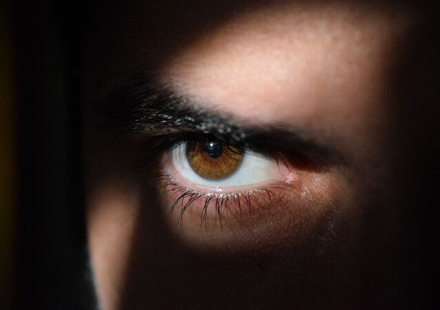 Un espía (imagen referencial)