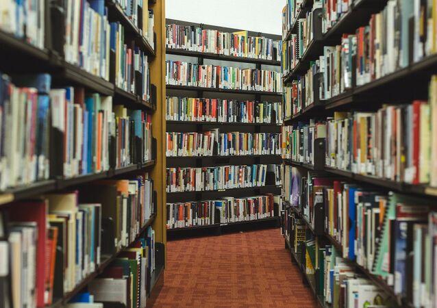 Biblioteca pública (imagen referencial)