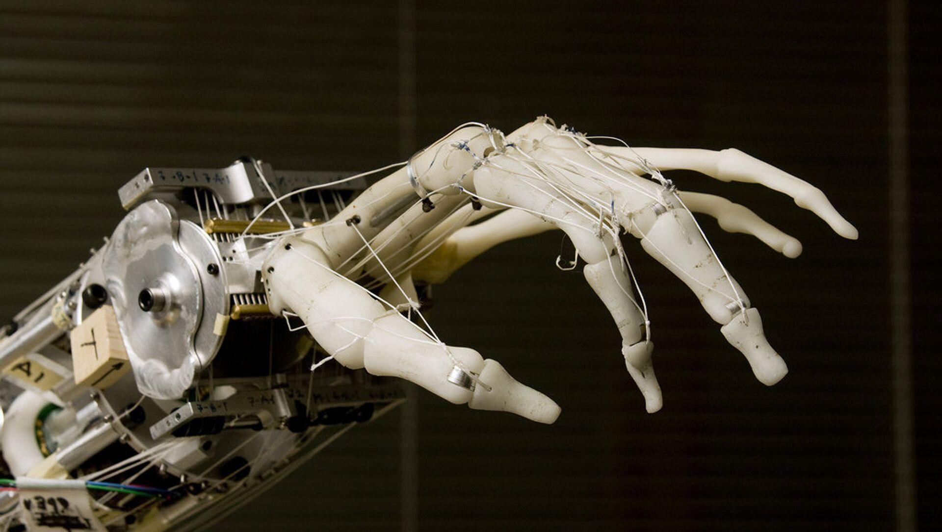 Una mano robótica - Sputnik Mundo, 1920, 07.02.2018