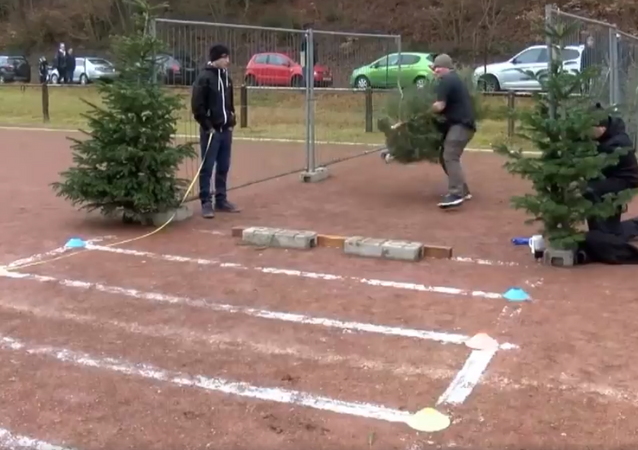 ¡Olvídense de las jabalinas! Los alemanes lanzan árboles de Navidad