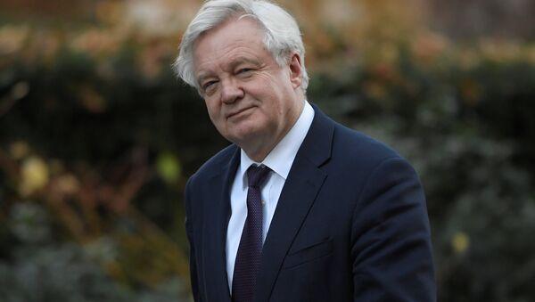 David Davis, el ministro británico del Brexit (archivo) - Sputnik Mundo