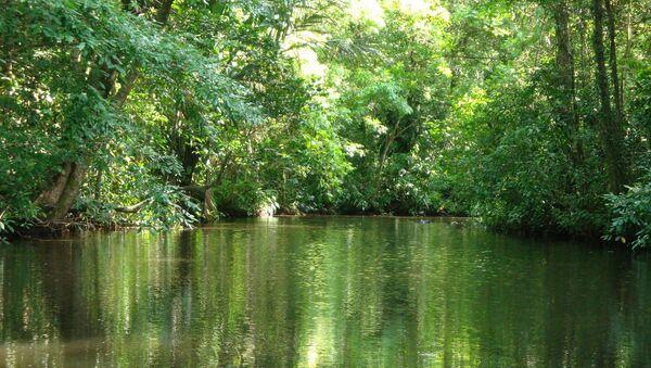 Recursos hídricos de Costa Rica - Sputnik Mundo