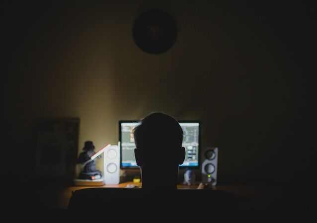 Una persona frente a una computadora