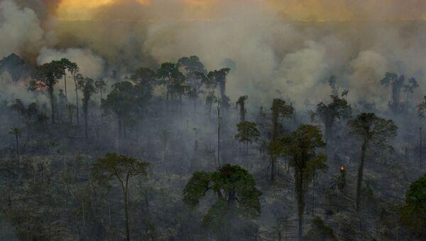 Incendios forestales en la Amazonía brasileña (archivo) - Sputnik Mundo