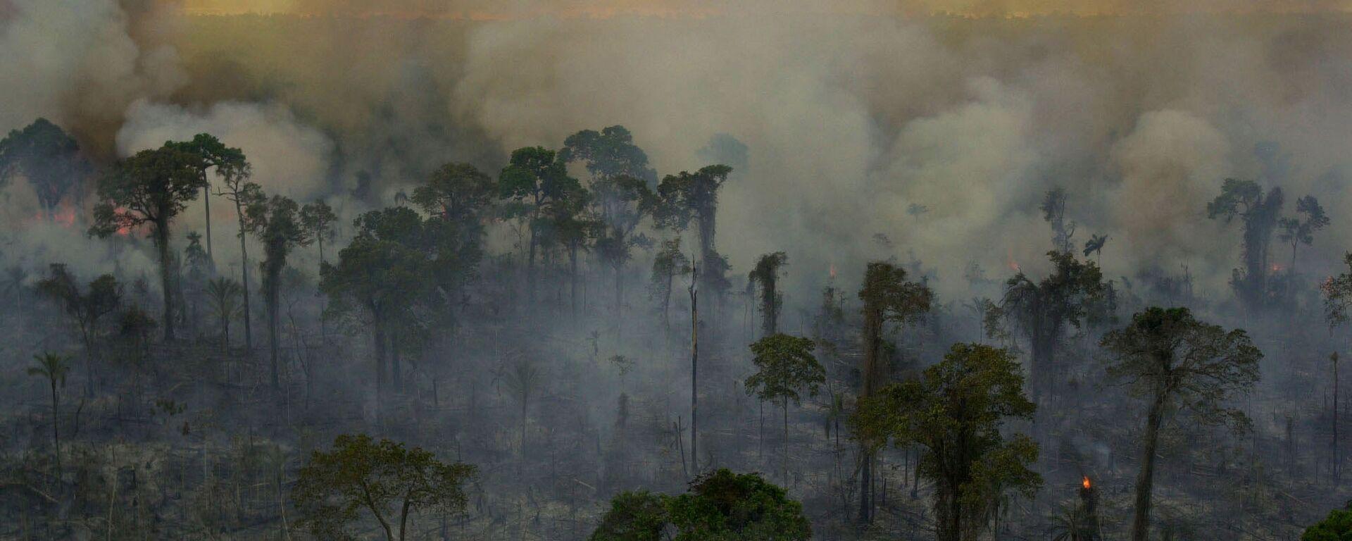 Incendios forestales en la Amazonía brasileña (archivo) - Sputnik Mundo, 1920, 01.07.2021