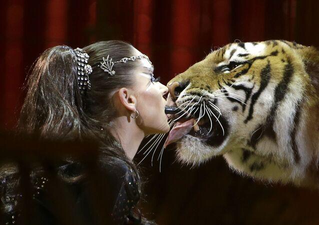 El frío ruso, bellas mujeres y un beso de tigre: las fotos más impactantes de la semana