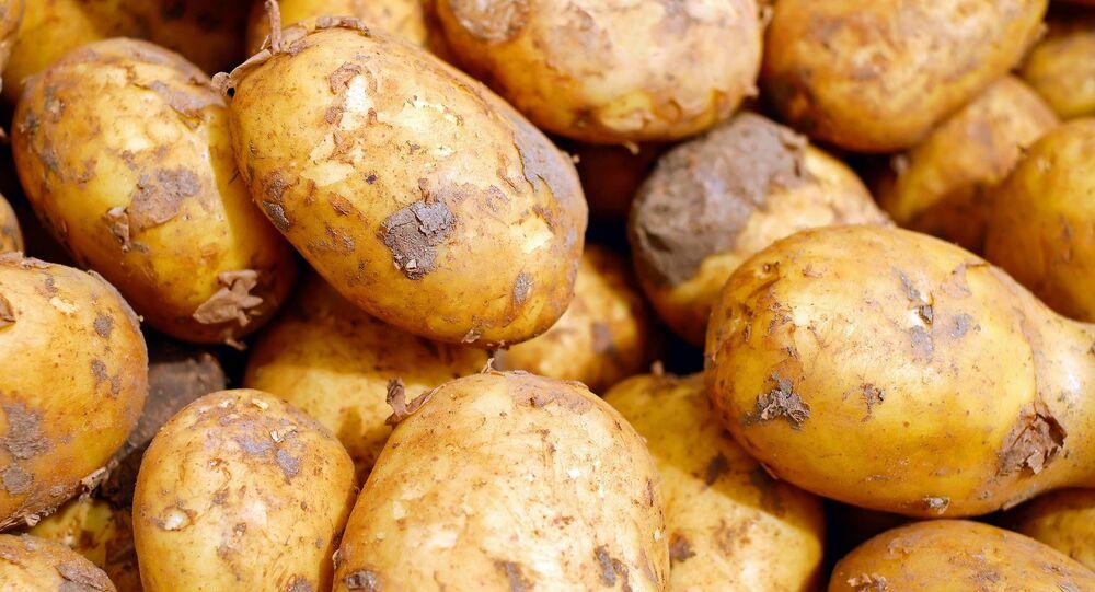 Patatas (imagen referencial)