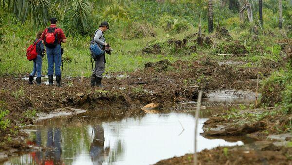 Los representantes del Convenio de Ramsar buscan daños ambientales en la Isla Portillos - Sputnik Mundo